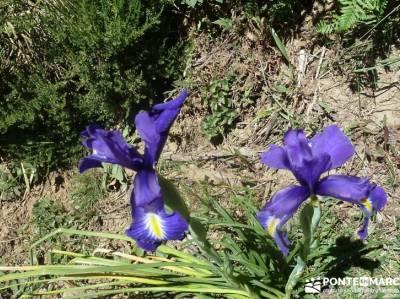 Somiedo, viaje Asturias; puente de mayo viajes viajes noviembre madrid senderismo